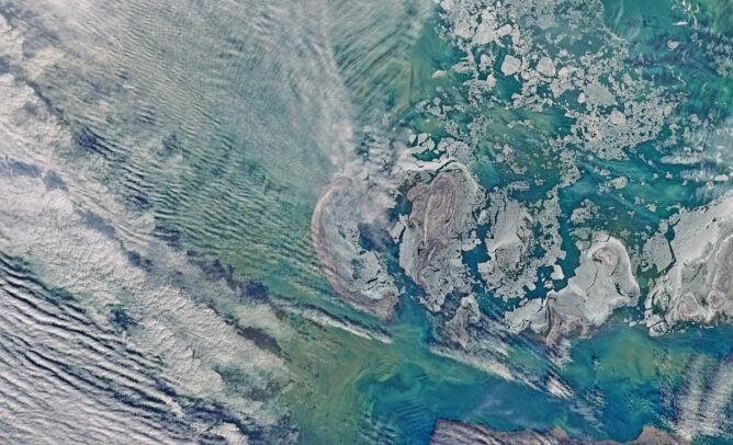 Wyspy Focze pokryte lodem (zdjecie z 17 stycznia 2016 roku)