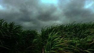 Prognoza pogody na weekend: IMGW wydał ostrzeżenia dla wszystkich województw