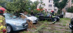 Połamane drzewa i zalane posesje. Ponad 2500 interwencji ostatniej doby