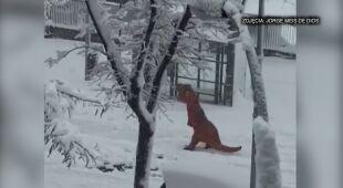 Walki na śnieżki, lepienie bałwana w Hiszpanii